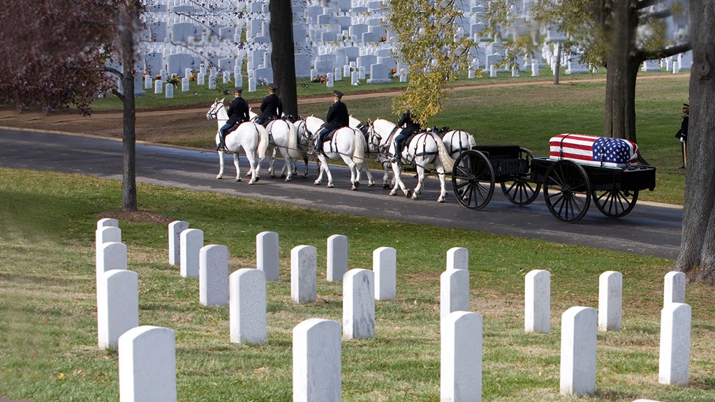 Arlington National Cemetery | Simply Marvelous Horse