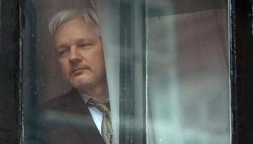 Assange at window